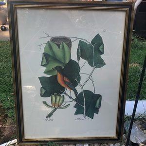 Bird Botanical Framed Art
